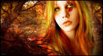 Autumn Amber by skate07