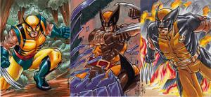 Wolverine trio by MelUran