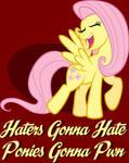 Ponies Gonna Pwn