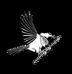 Chickadee Prince Books - Logo