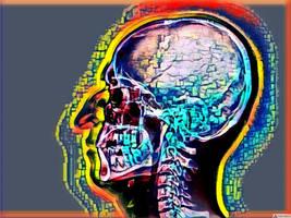 Skull by nevit