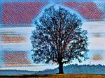Tree 20180225 124451 by nevit