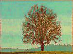 Tree 20180225 123124