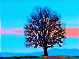 Tree 20180225 123109 by nevit