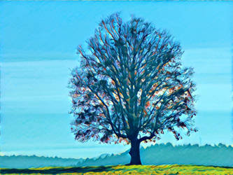 Tree 20180225 123057 by nevit