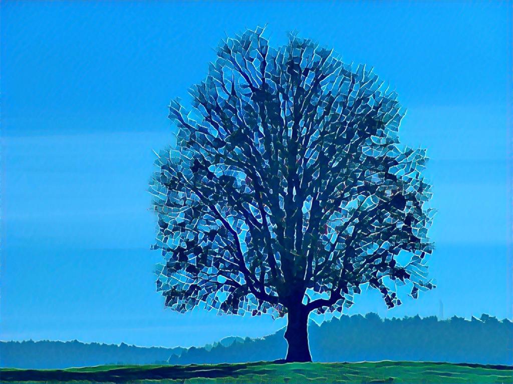 Tree 20180225 123029 by nevit