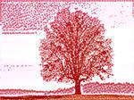 Tree 20180225 121636 by nevit
