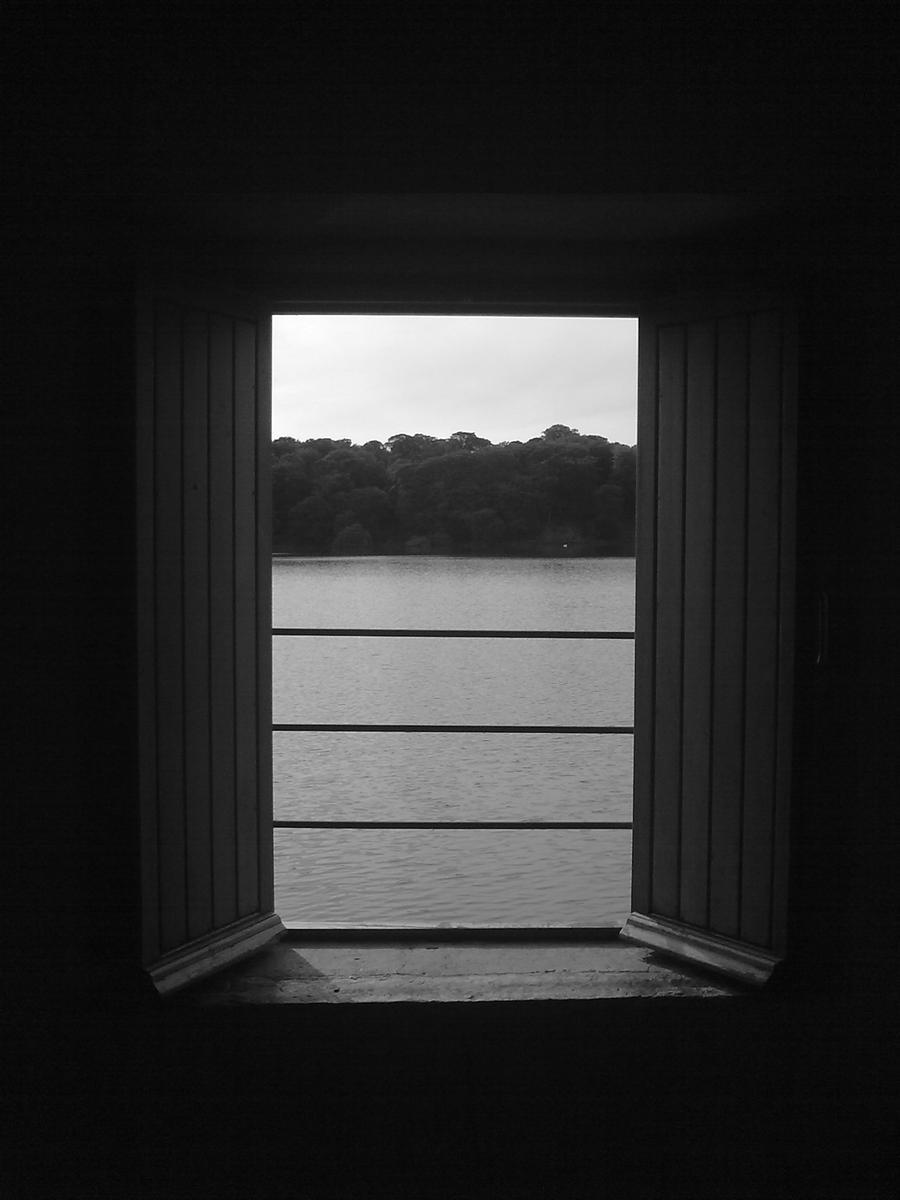 Open window at night - Open Window By Wingedtigresscaz Open Window By Wingedtigresscaz