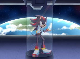 .:Shadow:. by SonicWind-01