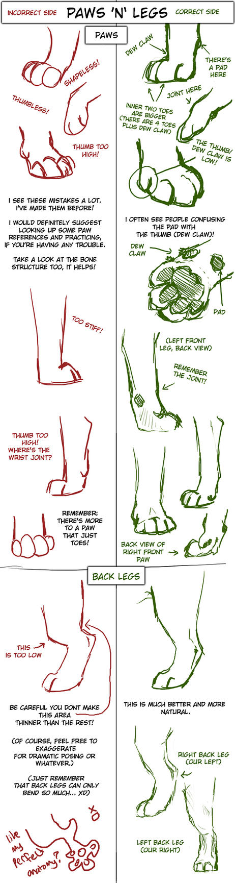 Big Cat Paw And Leg Tutorial By Tamberella