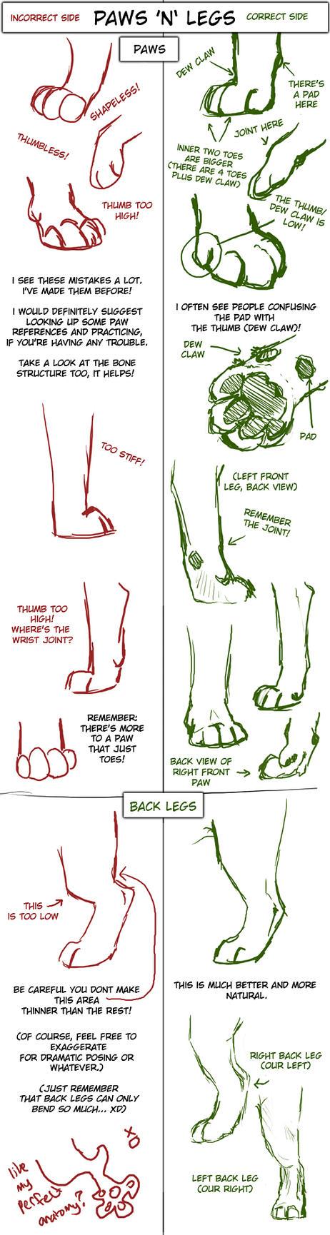 Big Cat Paw and Leg Tutorial by TamberElla