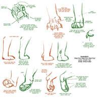 Big Cat Paw Tutorial 2 by TamberElla