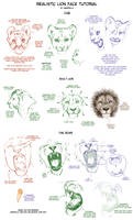 Realistic Lion Face Tutorial