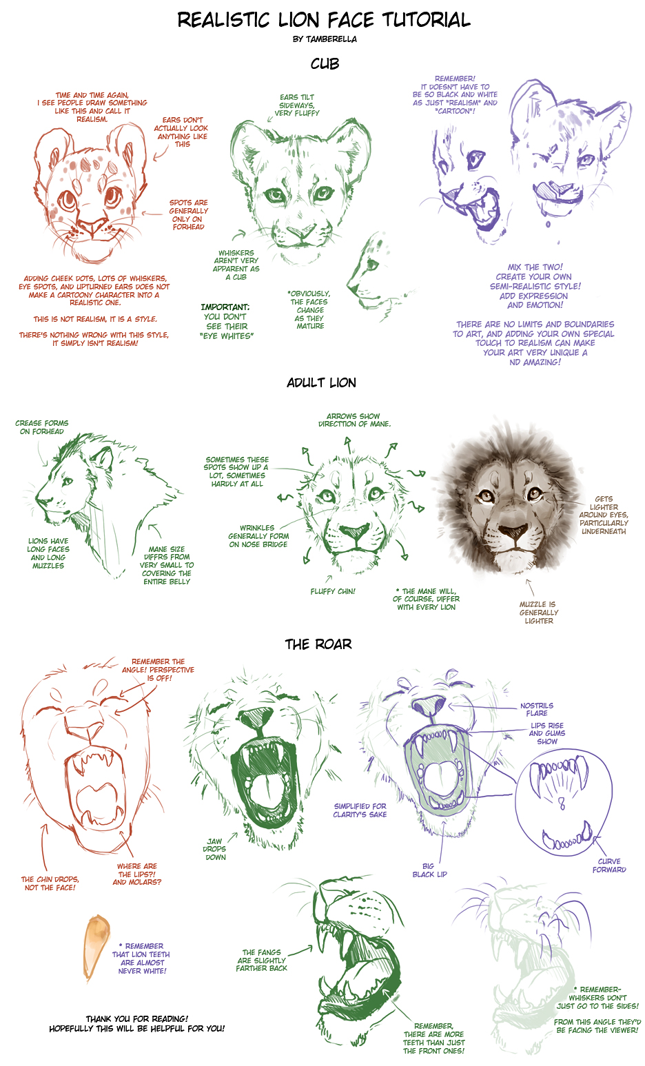Realistic Lion Face Tutorial By Tamberella On Deviantart 1024x829 pencil sketch of roaring lion realistic lion drawing pencil. realistic lion face tutorial by