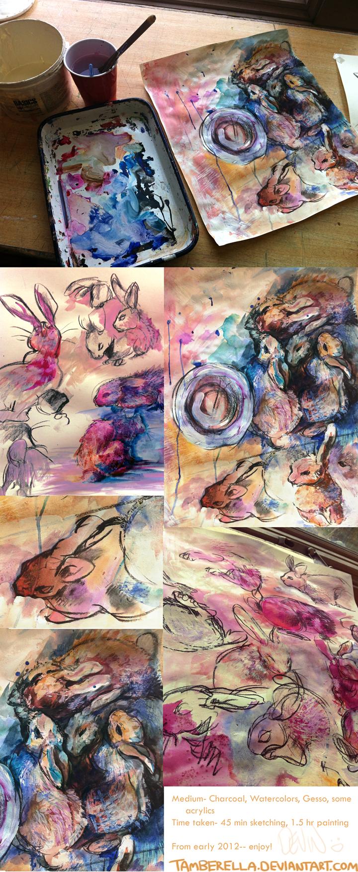Baby Rabbit Studies by TamberElla