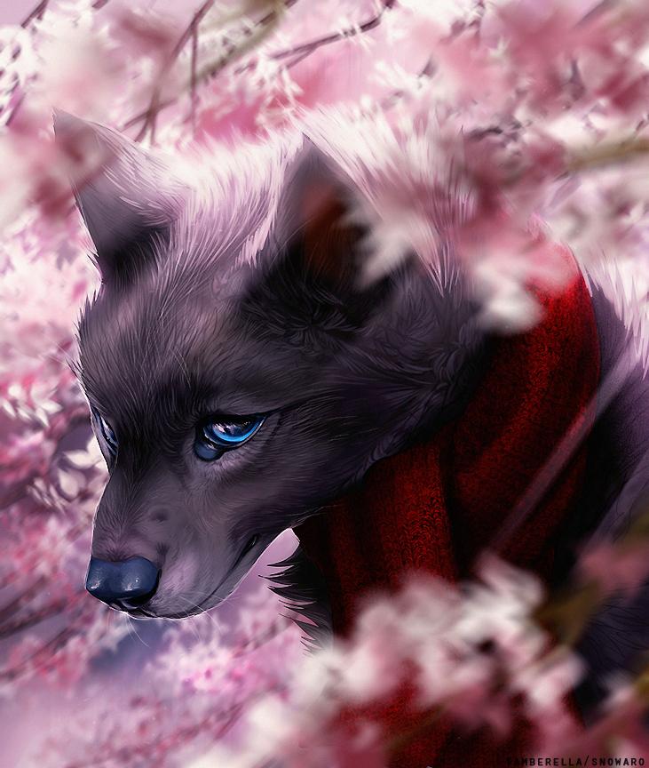 Blossom by TamberElla