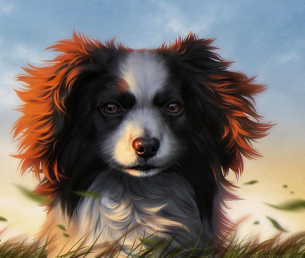 Windy by TamberElla