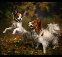 Autumn Run by TamberElla