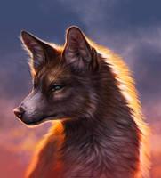 Sunset Fire by TamberElla