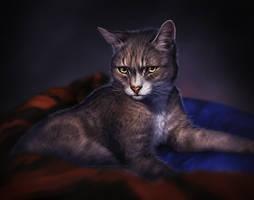 Fuzzy by TamberElla