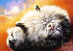 Catamancer- Fluffy Cat
