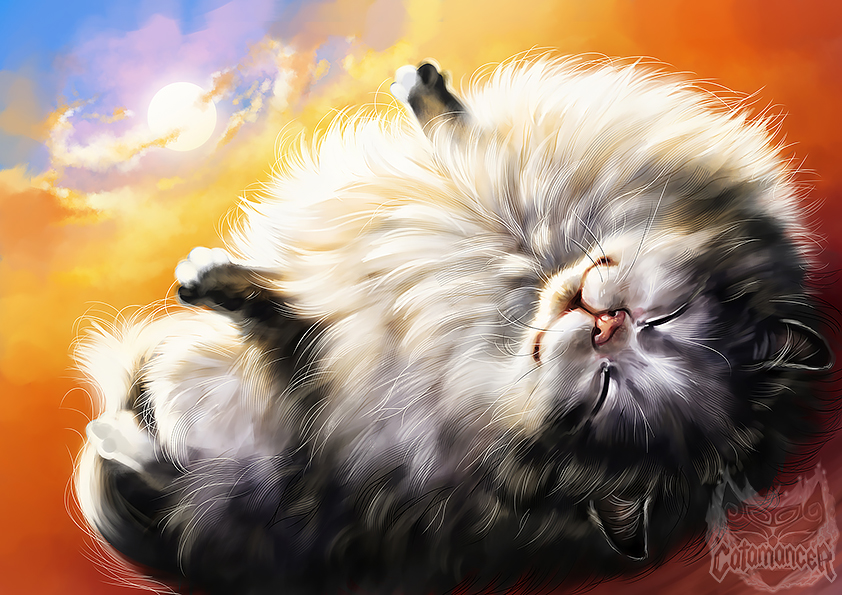 Catamancer- Fluffy Cat by TamberElla