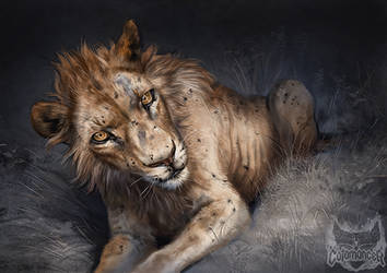 Catamancer Flea-Ridden Lion by TamberElla
