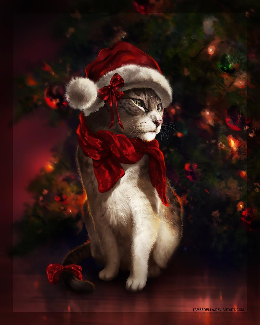 Christmas Cat by TamberElla on DeviantArt