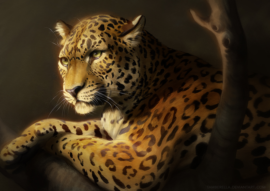 Digital Leopard Art Wallpapers: Catamancer Leopard By TamberElla On DeviantArt