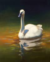 Swan Stream Painting