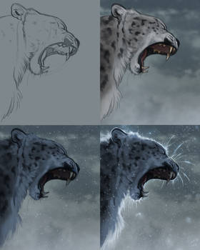 Snow Leopard Steps