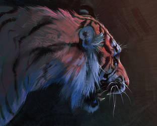 Tiger Sketch by TamberElla