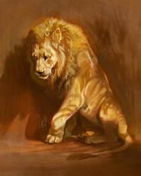 Lion light study Dec 24 by TamberElla