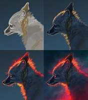 Starry fox step by step