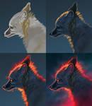 Starry fox step by step