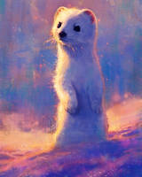Starry Stoat