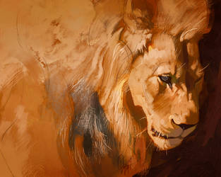 Lion light study July 22 by TamberElla