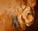 Lion light study July 22
