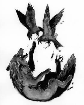 The Blackbird Fox