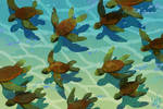 Drifting Turtles