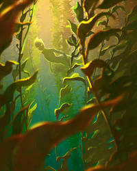 The Kelp Forest