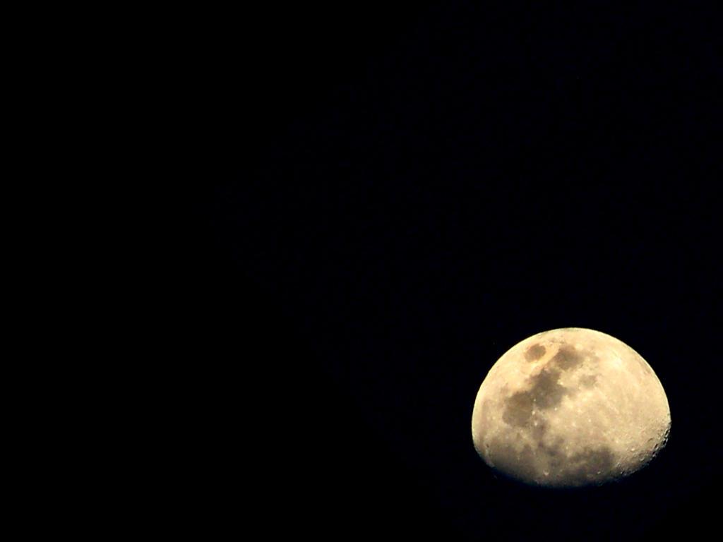 Mooncry by smev