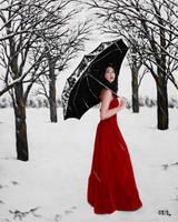 Winter Escape by Merlin111