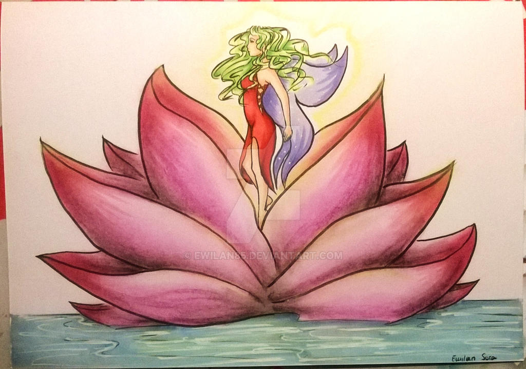 Lotus by Ewilan85