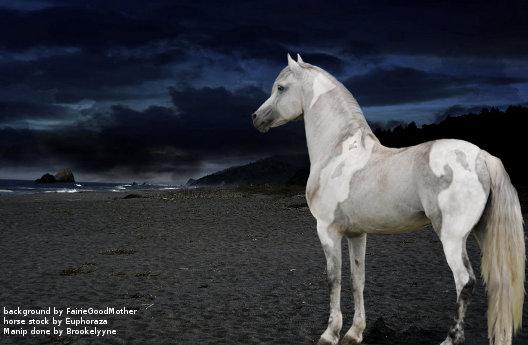 Rhyn horse for BQ by Brookelyyne