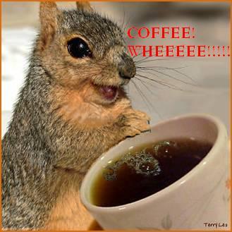 Squirrels and COFFEE... by VampireKoala95