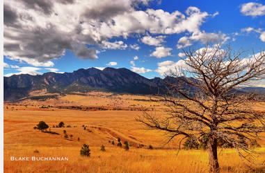 Fields of infinity by Blakannan