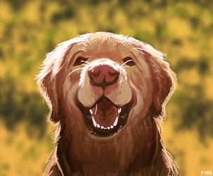 Pup by Fyrebeam