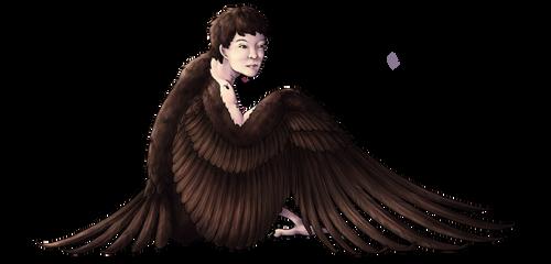 Raven Man (commission) by blazheirio889