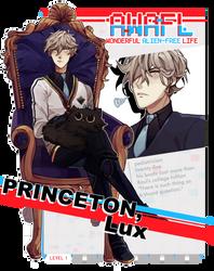 AWAFL: Lux Princeton